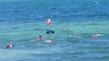 Snorkeling 101
